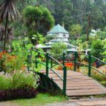 Inside Botanical Garden